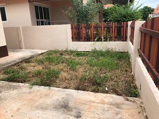 整備前の庭 右側